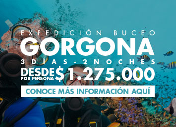 Promociones buceocolombia.com